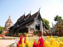 thailand för molee för chianglokmai wat royaltyfri fotografi