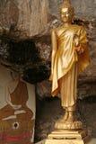 thailand för tempel för buddha grottakrabi tiger Arkivfoto