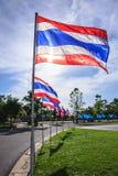 Thailand flaggor i parkera Arkivbild