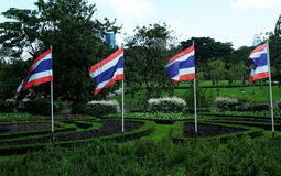 Thailand flags Royalty Free Stock Images