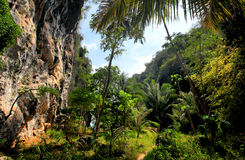 Thailand, forest, limestone cliffs Royalty Free Stock Image