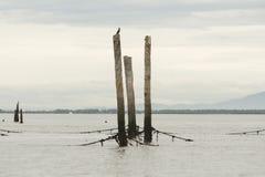 thailand för angthongnationalparkhav sikt Arkivbild