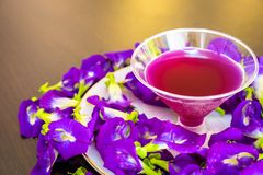 Thailand fresh healthy herbal beverage An-chan juice with lemon juice butterfly pea flower.  royalty free stock photo