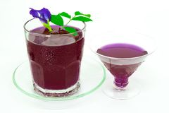 Thailand fresh healthy herbal beverage An-chan juice with lemon juice butterfly pea floweron white background. Thailand fresh healthy herbal beverage An-chan stock photos