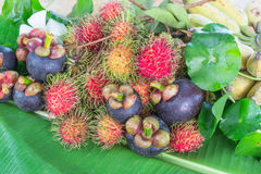 Thailand fruits Royalty Free Stock Image
