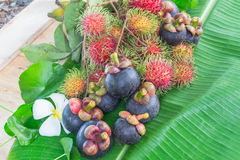Thailand fruits Royalty Free Stock Images