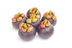 Thailand Fruits Mangosteen on white background Stock Image