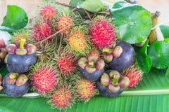 Thailand frukter Arkivfoton