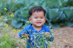 Thailand Happy Boy In The Vegetable Garden. Stock Image