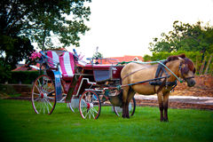 Thailand horse carriage Stock Photo