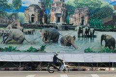 THAILAND ISAN SURIN ELEFANTFOLK royaltyfri foto