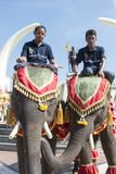 THAILAND ISAN SURIN ELEPHANT FESTIVAL ROUND UP Stock Images