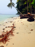 Thailand island Royalty Free Stock Photos
