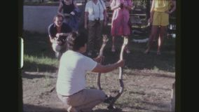 Cobras In Hand. THAILAND, KANCHANABURI, DECEMBER 1983. Three Shot Sequence Of A Male Native Snake Handler, Charming Two Cobras, Holding Them In His Hands In stock video