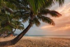 Thailand. Ko Chang. Tropical sunset. On the beach White Sand Beach Stock Photo