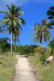Thailand - Ko Tao. Thailand, Southeast Asia - road in Ko Tao island in Surat Thani province Stock Photo