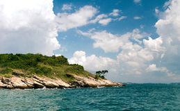 Thailand Koh Samet Lonely tree. On the island Royalty Free Stock Image