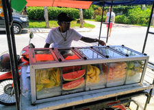 Thailand - Koh Samui. Koh Samui. I bought fruit on the street. All clean, hygienic and fresh. Melon, papaya, mango, pineapple royalty free stock image