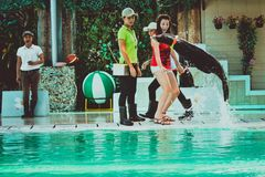 THAILAND-KOH SAMUI Meer-†‹â€ ‹Löweam 8. april 2013 spielen Stockfotos