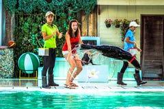 THAILAND-KOH SAMUI Meer-†‹â€ ‹Löweam 8. april 2013 spielen Lizenzfreie Stockfotografie
