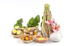 Thailand-Kräuterkörperpeeling für Hautbehandlung und für Gesundheit und Entspannung. Lizenzfreie Stockfotografie