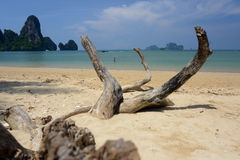 THAILAND KRABI Stock Photography