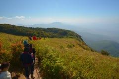 Thailand Landscape : Doi Inthanon nature walking trail, Chiang Mai Stock Image