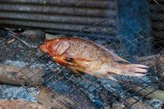 Thailand-Lebensmittel, gegrillter Fisch, gegrillte Fische auf einem Grill Lizenzfreie Stockbilder