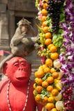 Thailand Monkey Party ( Thailand Monkey Buffet ). Royalty Free Stock Photo