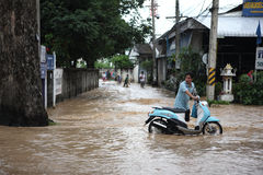 Thailand-Monsun, Leute, die durch Flut gehen lizenzfreie stockfotos