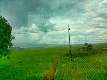 @Thailand Stock Photo