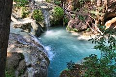 Thailand nature stock image