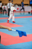 Thailand Open Karate-Do Championship 2013 Royalty Free Stock Photography
