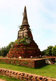 Thailand pagoda Royaltyfria Foton
