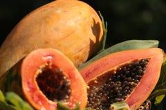 Thailand-Papayafrucht Stockfotografie