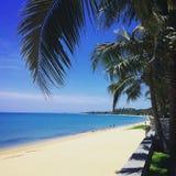 Thailand. Paradise beach sea Palm Stock Photos
