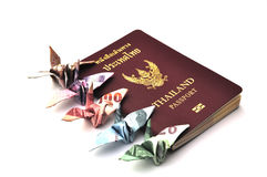 Thailand passport with bird banknotes Royalty Free Stock Photo