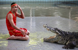 Crocodile show in Thailand Stock Photos