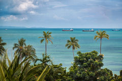 Thailand. Phuket. Cape Panwa. Sea. Ships. Palm trees. Horizon. Travel to Thailand. Honeymoon trip. View from the hotel room Royalty Free Stock Photos