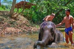 THAILAND PHUKET, MARS 23, 2018 - pojken 10 gamla år simmar i floden med elefanten för livsstildesign arkivbild