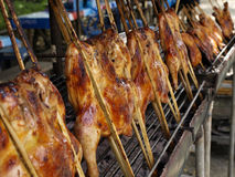 Thailand roasting chicken Stock Image
