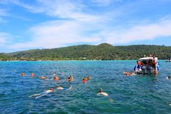 Thailand snorkeling Stock Photography
