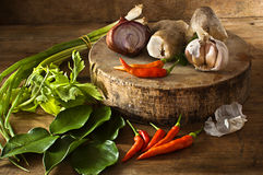 Thailand soup ingredients to cook low key light. Stock Image