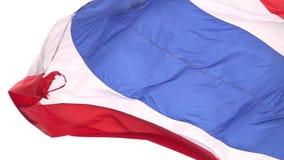 Thailand-Staatsflagge, Zeitlupe, glatter Schlag im Wind auf einem windiger Tagesaufgehende sonne stock video