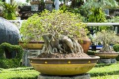 Thailand style garden Royalty Free Stock Photos