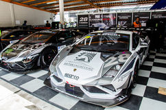 Thailand Super Series 2014 Race 3 Royalty Free Stock Photo
