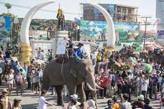 THAILAND SURIN ELEPHANT ROUND UP FESTIVAL Royalty Free Stock Image