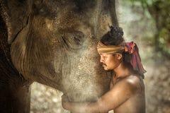 Thailand Surin landskapkoppling av mahouts och elefanter Är Fotografering för Bildbyråer
