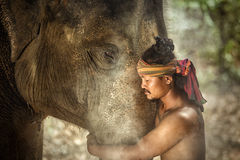 Free Thailand Surin Province Engagement Of Mahouts And Elephants. Is Stock Image - 90916881