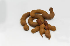 Thailand tamarind isolate. Thailand tamarind peeled in isolate Royalty Free Stock Photography
